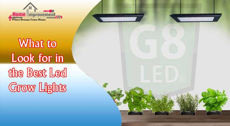 What to Look for in the Best Led Grow Lights
