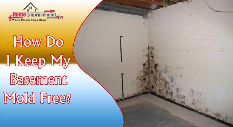 How Do I Keep My Basement Mold Free?